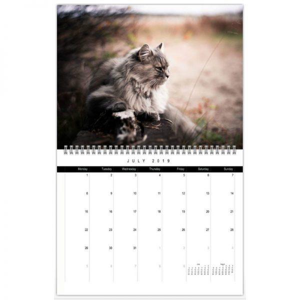 Siberian cat calendar